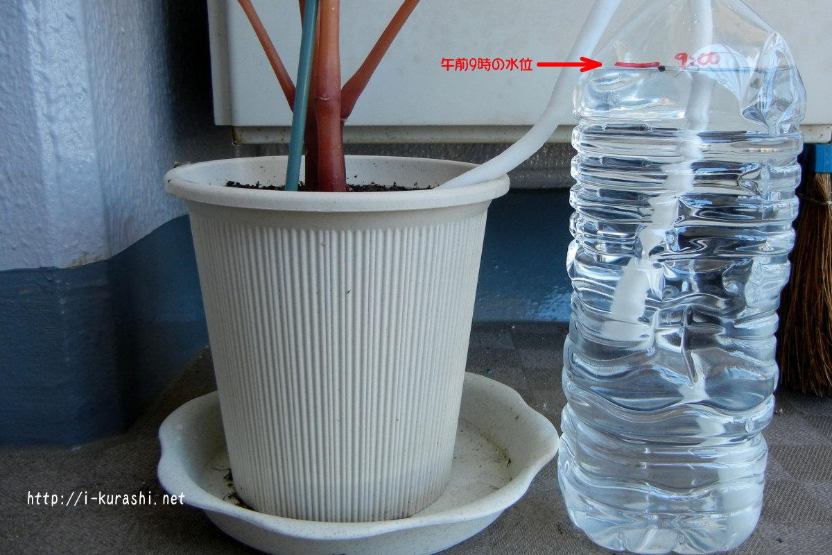 長期旅行中の留守も解決!鉢物への水やり [家庭菜 …