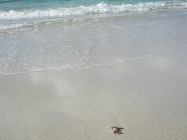 角島・大浜海水浴場砂浜の砂はサラサラ
